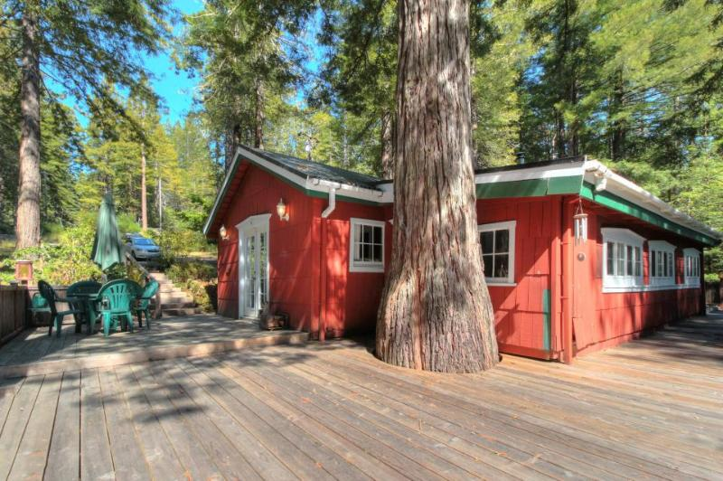 Unique property on 10+ acres, two miles from coast, pets ok! - Image 1 - Gualala - rentals