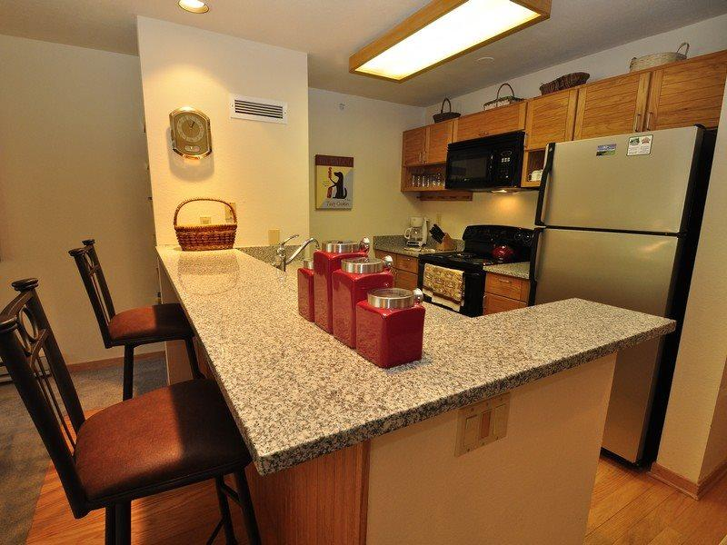 Newly updated kitchen - Liftside Condominiums 202 - Stainless steel appliances, amazing ski area views, walk to slopes! - Keystone - rentals