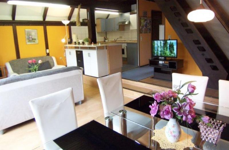 Vacation Home in Buehlerzell - 1345 sqft, quiet, sunny, large (# 8628) #8628 - Vacation Home in Buehlerzell - 1345 sqft, quiet, sunny, large (# 8628) - Rosenberg - rentals