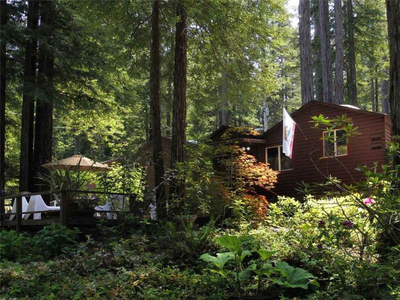 ZEN HOUSE - Image 1 - Guerneville - rentals