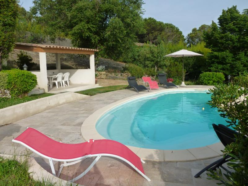 Villa Roche Grise VI3010 - Image 1 - Berre-les-Alpes - rentals