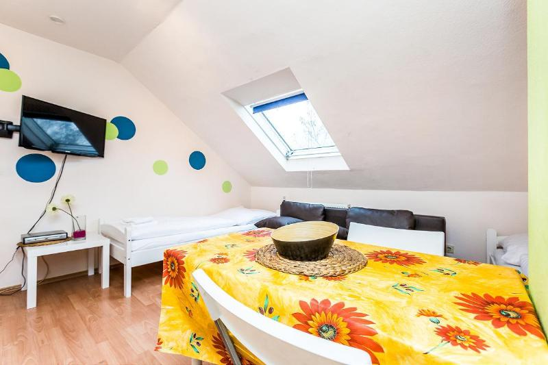 Cozy attic flat for four - 47 Cozy apartment with two rooms in Cologne - Cologne - rentals