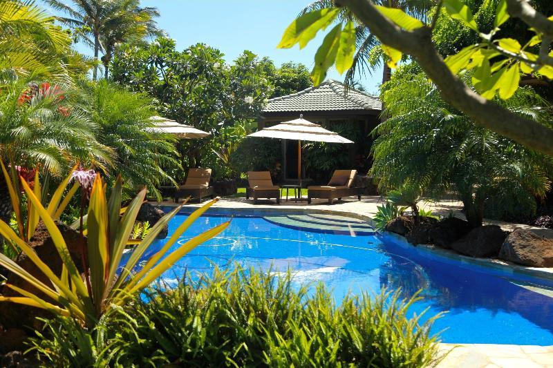 overlooking 40 foot salt water pool towards bungalow - Poipu Bay Getaway 350yrds to Beach, pool, air cond - Poipu - rentals