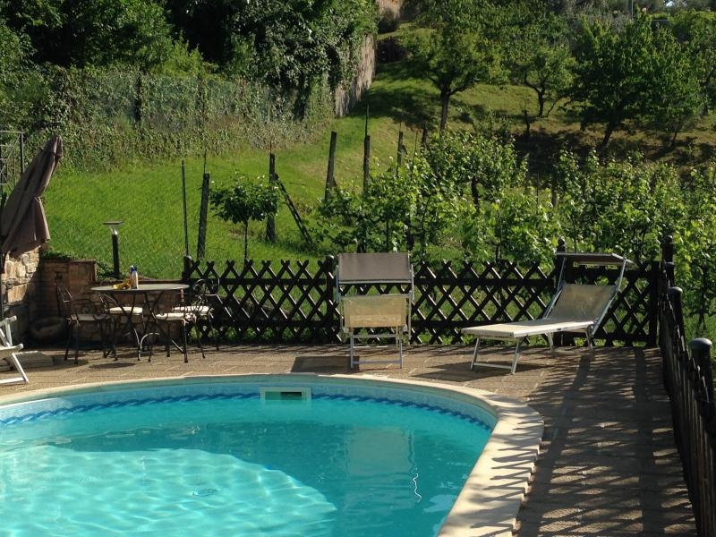 Luxury home rental by owners in Perugia, Umbria - Luxury Villa Nuba, salt water pool,jacuzzi,terrace - Perugia - rentals