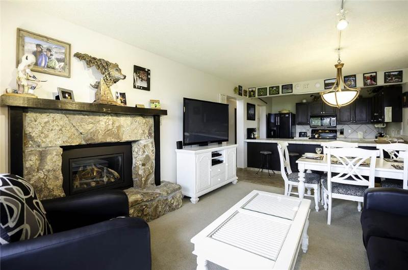 Bronze Tree Condominiums - BT104 - Image 1 - Steamboat Springs - rentals