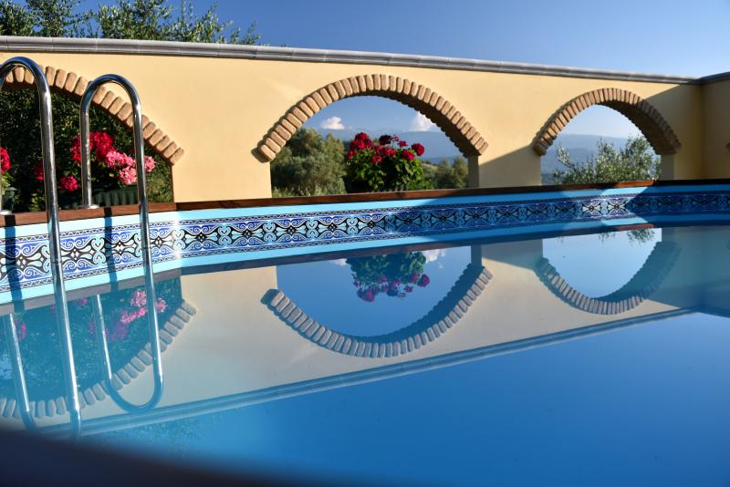 Plunge pool with amazing views in secluded courtyard. - Villa Leonardo Apartments, Sleeps 4 - Bucchianico - rentals
