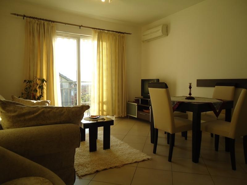 Big apartment - Image 1 - Herceg-Novi - rentals