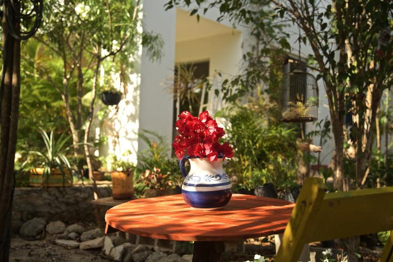 Jungle garden - Casa Chachalaca- 3 Bedroom Eco-Vacation Rental - Tulum - rentals