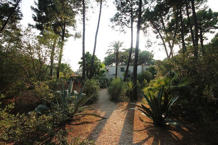 Villa Botanic - Image 1 - Pian di Rocca - rentals