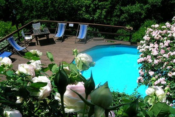 Villa Rose Antiche - Image 1 - Reggello - rentals