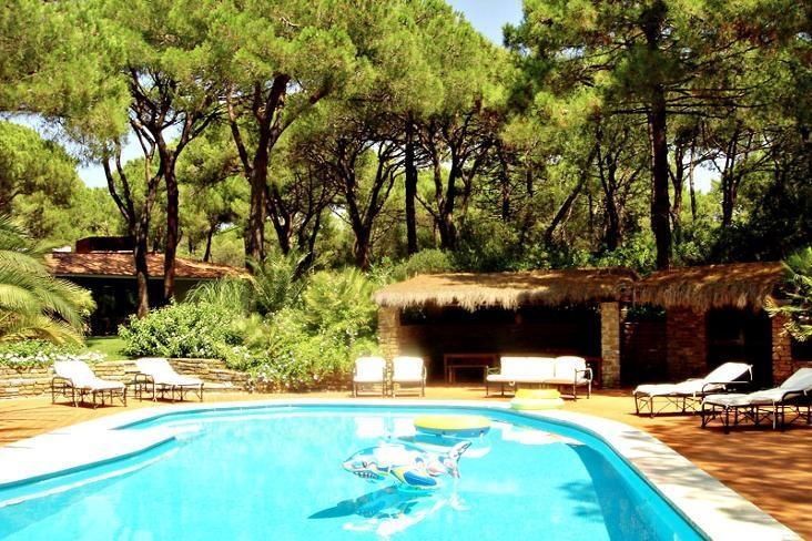 Villa Yuppi Du - Image 1 - Pian di Rocca - rentals