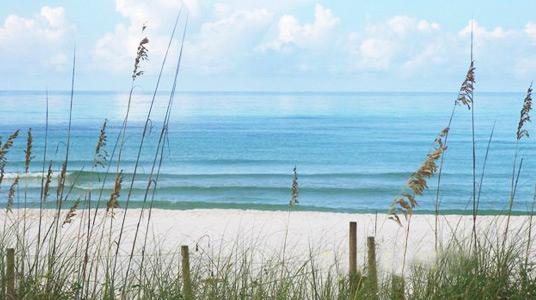 Magnificent beach! - May SPECIAL!!!!985/wk 2/2 on Crescent Beach!!!! - Siesta Key - rentals