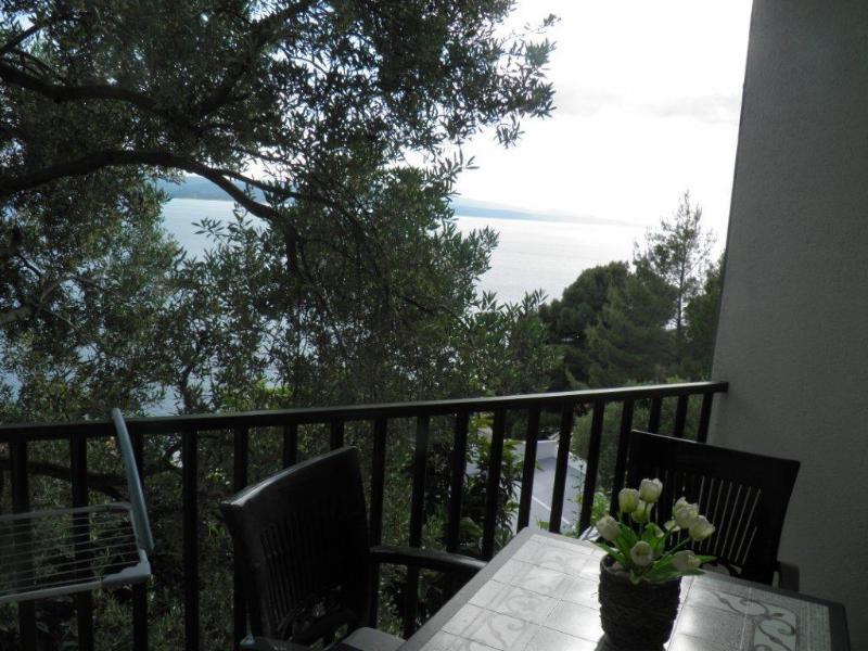 SA3(2+1): terrace view - 00513BREL  SA3(2+1) - Brela - Brela - rentals