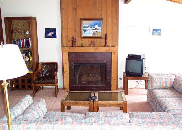 Living Room - 2 Bedroom, 2 Bathroom Vacation Rental in Solana Beach - (SUR149) - Solana Beach - rentals