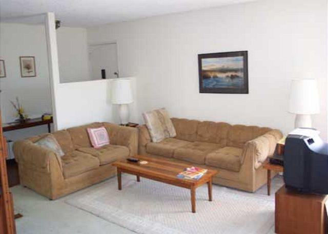 Living Room - Two bedroom condo in Solana Beach Villa2 - Solana Beach - rentals