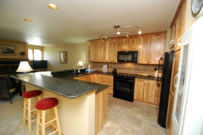 Liftside Condominium 21 - Completely remodeled, updated appliances, ski area views, walk to slopes! - Image 1 - Keystone - rentals