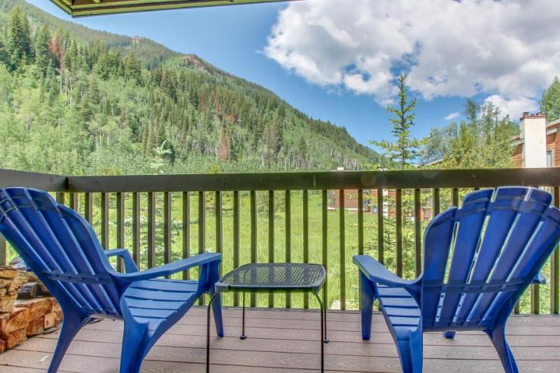 Stunning views with access to community pool & amenities - Image 1 - Silverthorne - rentals