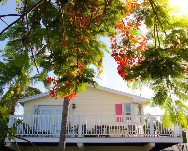 Elevated Ocean View Cottages - Image 1 - Marathon - rentals