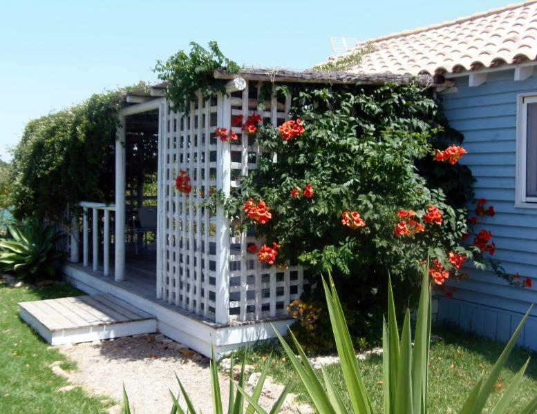 'Casita Azulita'  a short walk to the beach - Image 1 - El Palmar - rentals