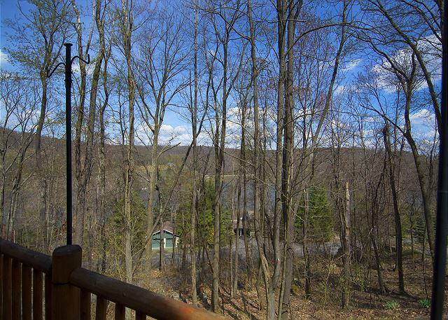 Deck View - Adventures happen in this spectacular 4 Bedroom Mountain Log Home! - McHenry - rentals