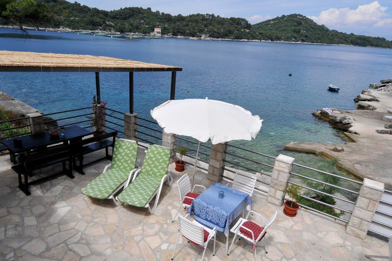 House in Sobra, just on the sea.. - Image 1 - Sobra - rentals