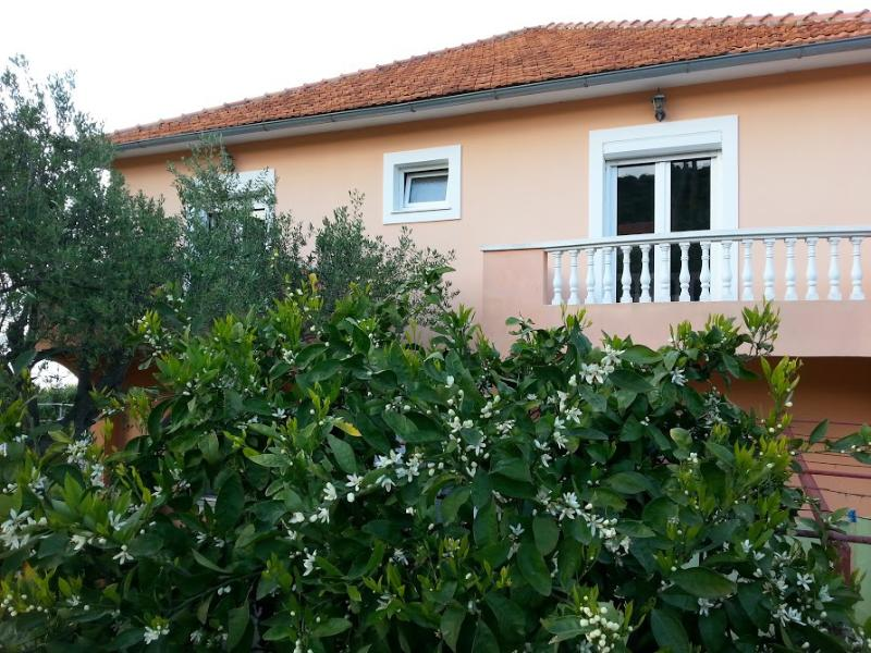 house - 2839 A1(4) - Tkon - Tkon - rentals