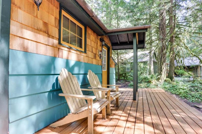 Modern, cozy mountain retreat  with hot tub! - Image 1 - Rhododendron - rentals