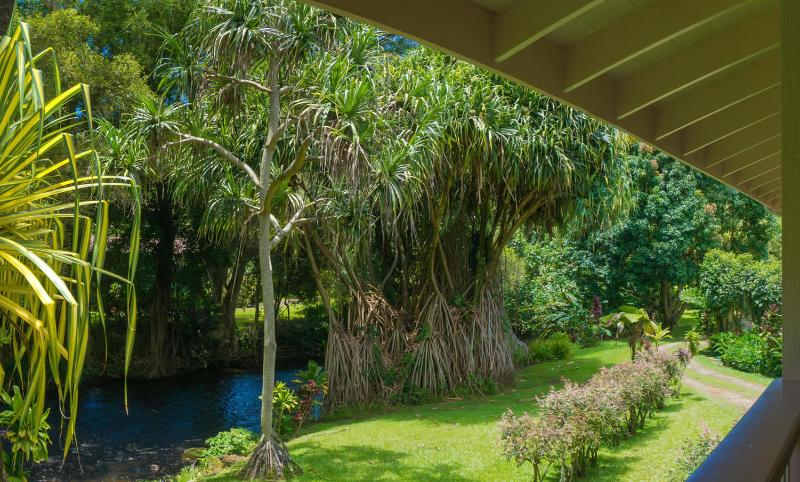 The view from the Guest House Lanai. - River Estate - Selected 1of12 Romantic Properties: Lonely Planet - Hanalei - rentals