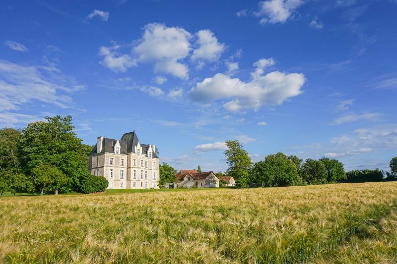 Chateau Segalin - Image 1 - Archigny - rentals