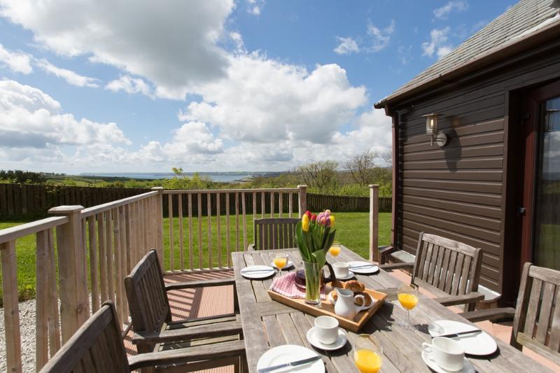 Premier Lodge, Trenython Manor located in Par, Cornwall - Image 1 - Par - rentals