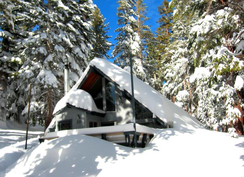 Ski in/Ski out Slope side cabin - Chalet #10 - Image 1 - Mammoth Lakes - rentals