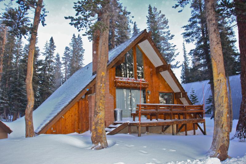 Ski in/Ski out Slope side cabin - Chalet #17 - Image 1 - Mammoth Lakes - rentals