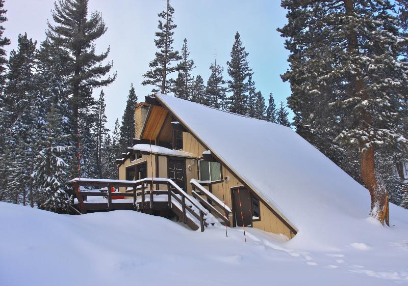 Ski in/Ski out  Slope side cabin - Chalet #18 - Image 1 - Mammoth Lakes - rentals