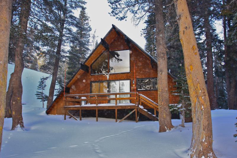 Ski in/Ski out  Slope side cabin - Chalet #4 - Image 1 - Mammoth Lakes - rentals