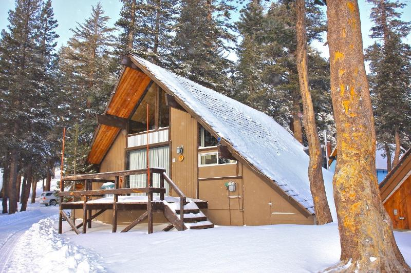 Ski In/Ski out Slope side cabin - Chalet #5 - Image 1 - Mammoth Lakes - rentals
