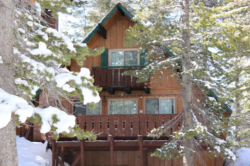 Chalet #21 - Ski In/Ski Out Slope side cabin - Chalet#21 - Mammoth Lakes - rentals