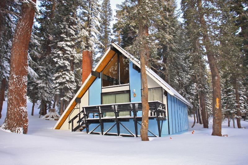 Ski-in/out Slope side cabin - Chalet #25 - Image 1 - Mammoth Lakes - rentals