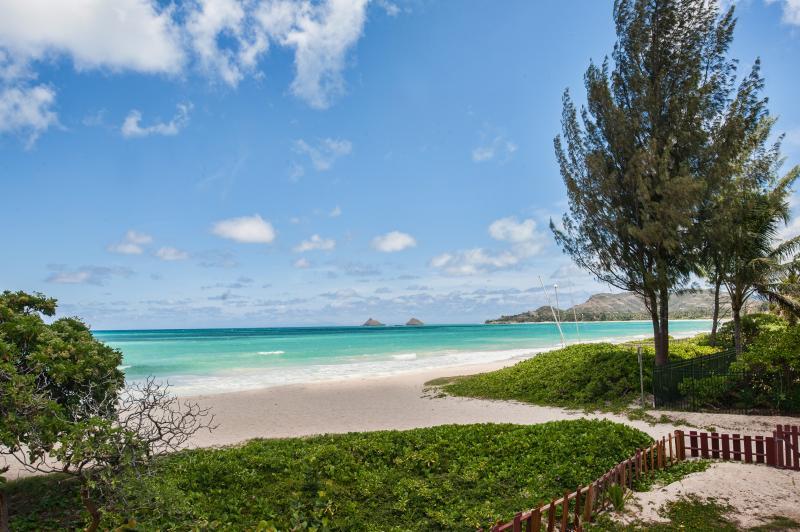 View of Kailua Beach from home. - BEACHFRONT 6BR/4.5BA Kailua family style with Pool - Kailua - rentals