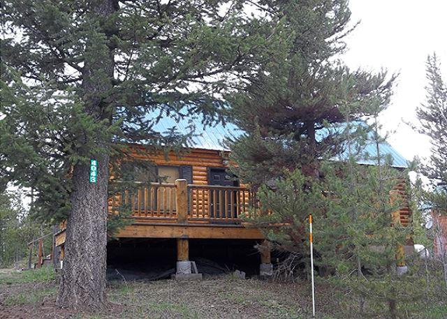 Kiowa Buffalo - Kiowa Buffalo is a comfy and cozy cabin for 8 people. - Island Park - rentals