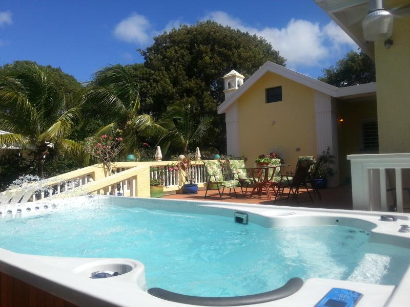 Water gym, pool, spa and hydrotheray all in one - 4 BEDRM. 6 BATH LUXURY  RENTAL, HYDROPOOL, BEACHES - Frederiksted - rentals