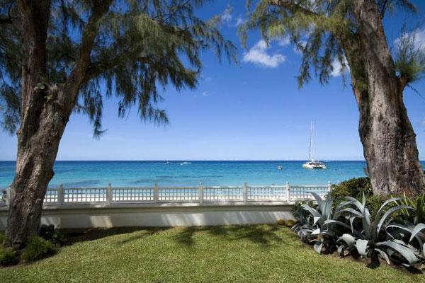 - Old Trees 8 - West Beach - Barbados - rentals