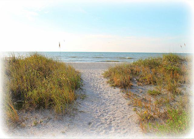 Affordable Luxury Vacation at Pier House during November and December! - Image 1 - Indian Rocks Beach - rentals