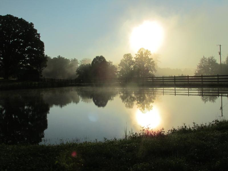 Sunrise view over the backyard pond. - Warm, Cozy Cabin With A Backyard Pond, Gas Log Fireplace: Low Mid Winter Rates! - London - rentals