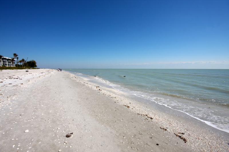 Beach - White Sands 14 - Sanibel Island - rentals