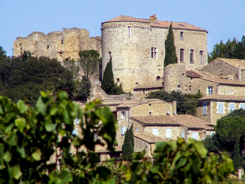 Chateau Venaya - Image 1 - Chusclan - rentals