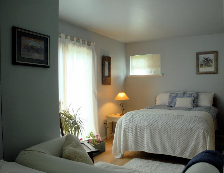 Your bedroom with a double bed, sofa and sliding glass doors to the back deck. - BRIDGEHAPMTON Private Rm + Bath /AUG CANCELLATION! - Bridgehampton - rentals