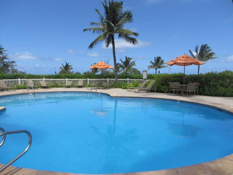 Oceanview 2 BR End Unit! Pool, Wifi, Washer/Dryer! - Image 1 - Kapaa - rentals