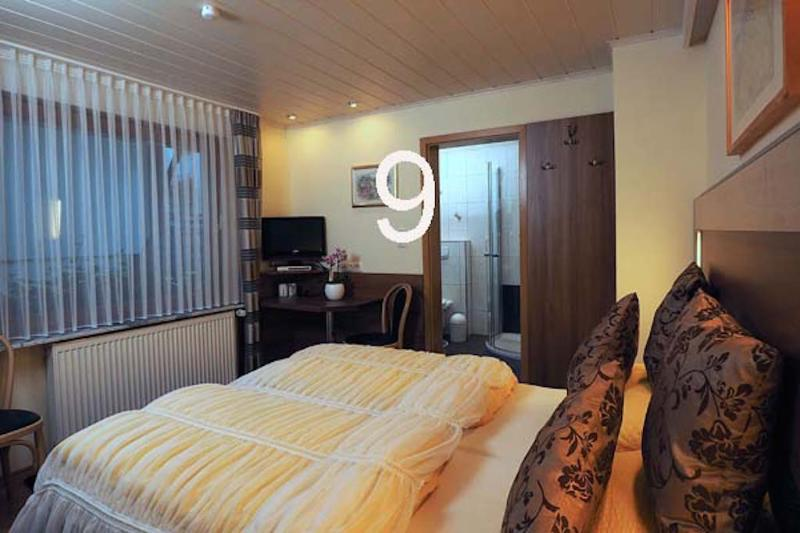 Double Room in Bacharach - nice, clean, modern (# 8905) #8905 - Double Room in Bacharach - nice, clean, modern (# 8905) - Bacharach - rentals