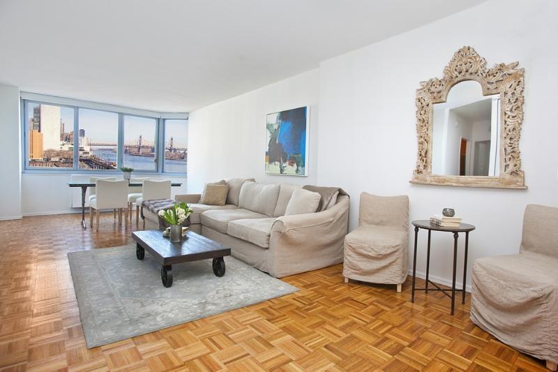 Living Room - Luxury Five Star Condo Midtown East - New York City - rentals