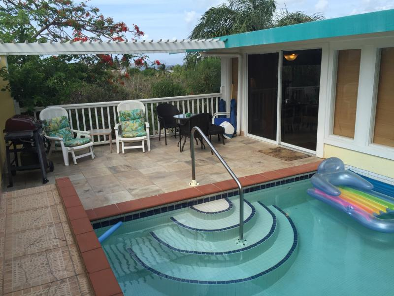 Graduated concrete and tile steps to pool - LUXURY Private Pool Villa .  Walk to 3 beaches. - East End - rentals